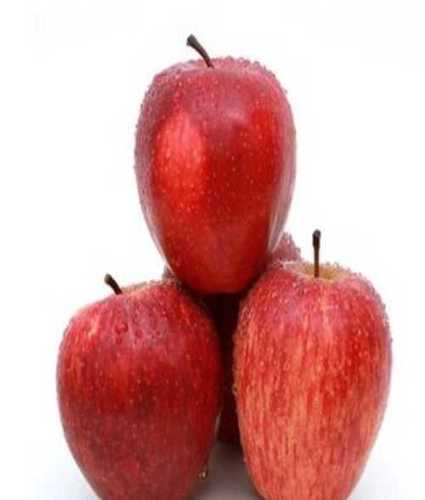 Fresh Red Sweet Apples