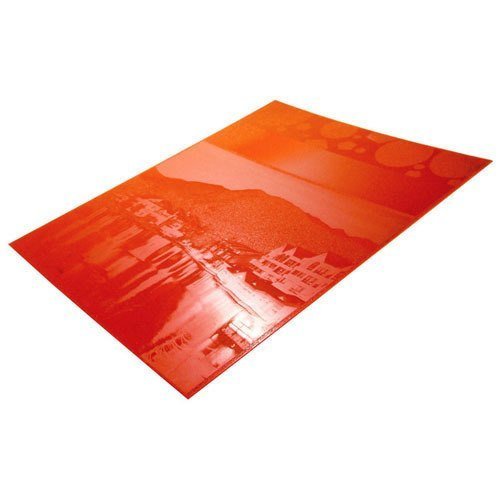 Red Rectangular Polymer Stereo Plate