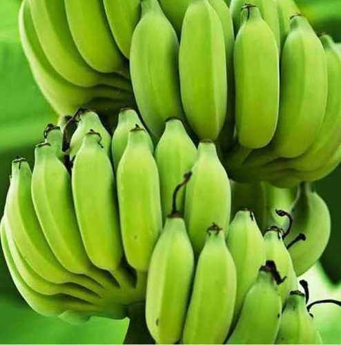 Absolutely Delicious Green Banana