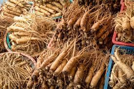Light Colored Herbal Ginseng