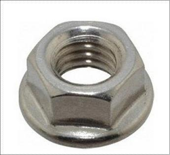 Hex Ss Flange Nuts, Size: M12 - M32