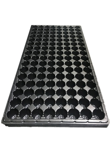 50, 98 And 104 Cavity Seedling Tray