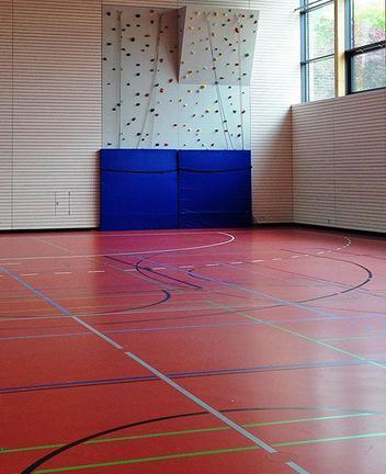 Diesno Sports Flooring