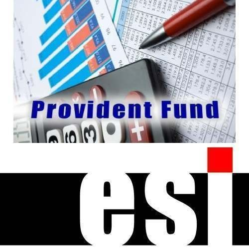 ESI Returns Services