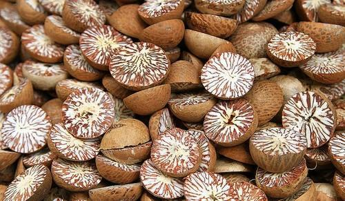 High Quality Whole Dried Betel Nut