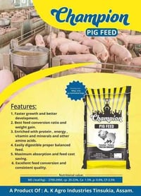 High Protein Pig Feed