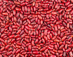 Organic Red Kidney Beans Packaging: Bulk