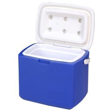 Insulin Cooler Box