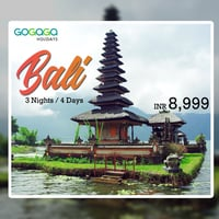 Bali Tour Package Services