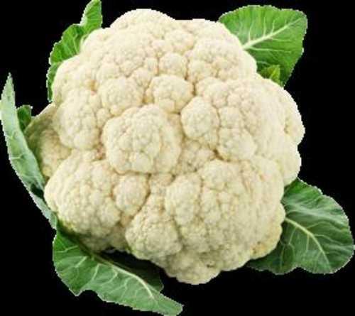 Export Quality Fresh Organic Cauliflower