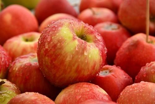Farm Fresh Apple Pulp