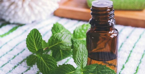 100% Natural Peppermint Oil