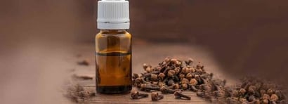 Eugenol (Extracted From Clove Oil) Purity: 100%
