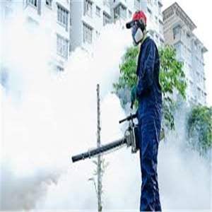 Vidit Mosquitoes Control Service