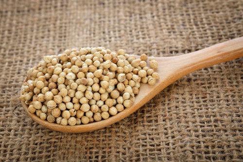 Organic Edible Coriander Seeds