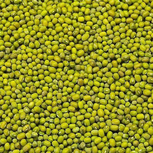 High Grade Green Mung Beans