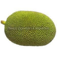 100% Natural Green Jackfruit