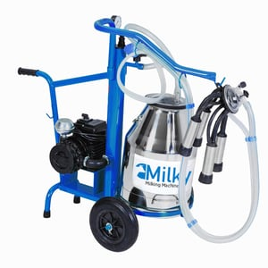 Two Cattle Milking Machine