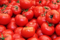 Chemical Free Fresh Tomato