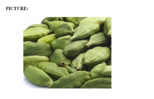 Green Cardamom With Rich Aroma
