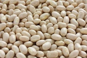 Nutrition Rich Navy Beans