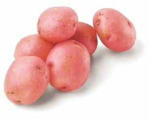 Fresh Red Potato for Cooking