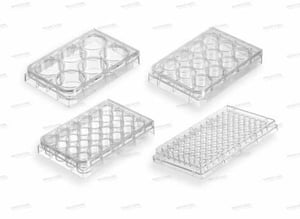 High Transparency Cell Culture Plates