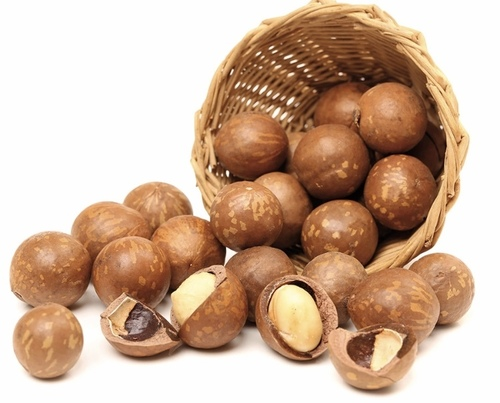 Highly Nutritious Macademia Nuts