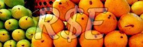 RSE Baiganpally Mango Fruits