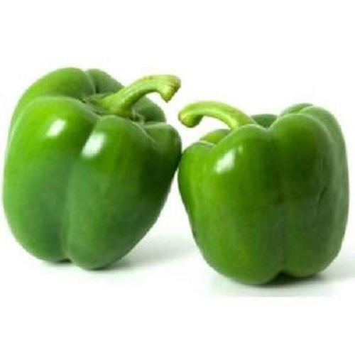 Fresh Green Capsicum for Cooking