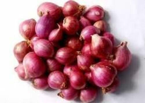 Fresh Sambar Onion for Cooking