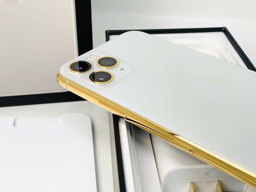 Unlocked iPhone 11 Pro Max 256 GB A2161 CDMA Plus GSM (Apple)