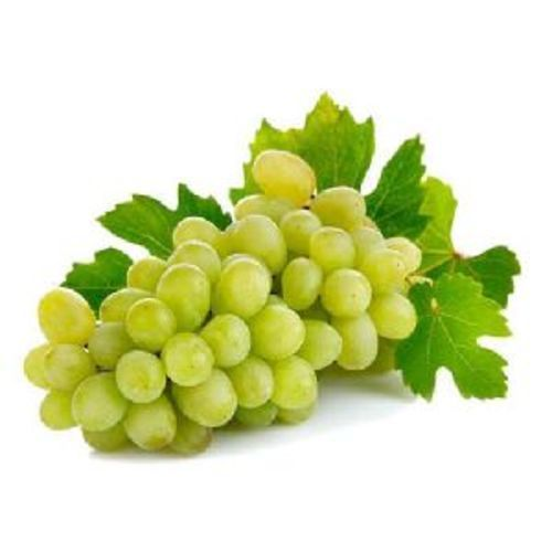 Fresh Green Grapes Fruits Size: Small