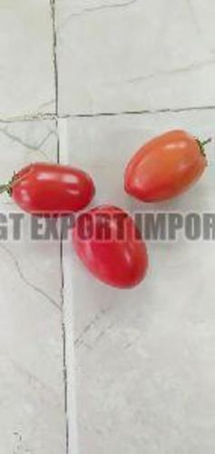 Fresh Hybrid Tomato for Cooking