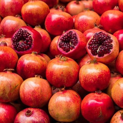 Red Fresh Pomegranate (Punica Granatum)