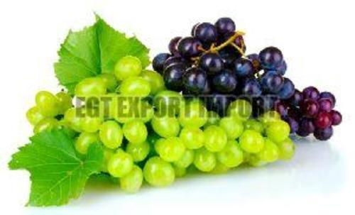 Green & Black Fresh Grapes