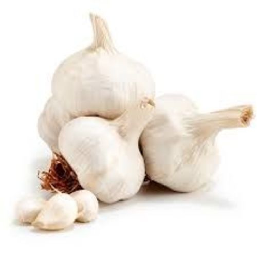 White Whole Garlic for Cooking
