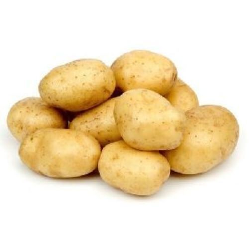 Fresh Brown Potato for Cooking