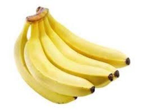 Fresh Cavendish Banana Fruits