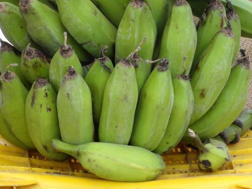 Fresh Green Raw Banana