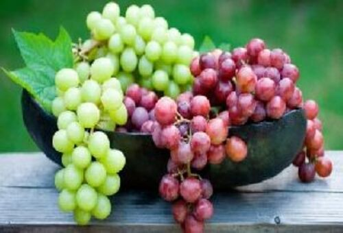 Fresh Natural Grapes Fruits