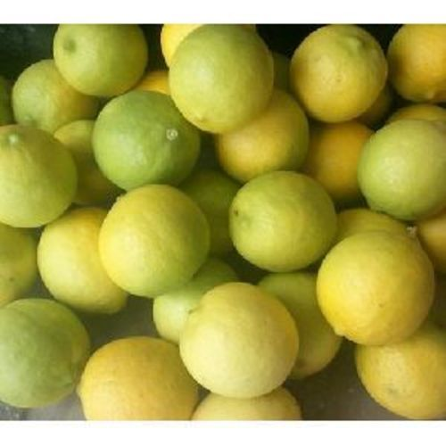 Fresh Natural Lemon For Food
