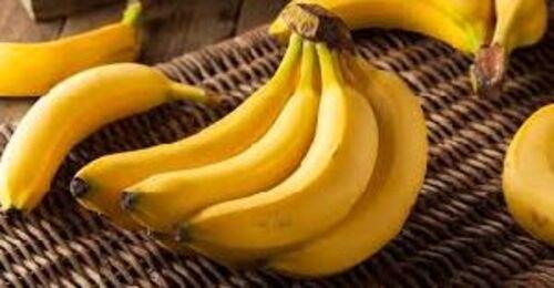 Fresh Organic Green Banana Size: Large