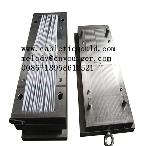 Car Wiring Wire Tie Injection Mould