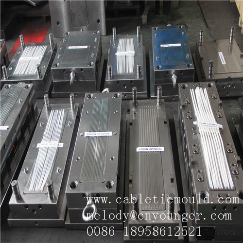 Nylon Cable Ties Mould
