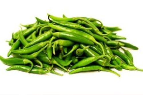 Fresh Green Chilli for Food