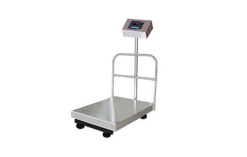 Electronic SS Platform Scale