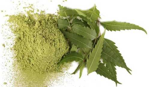 Natural Herbal Neem Extracts