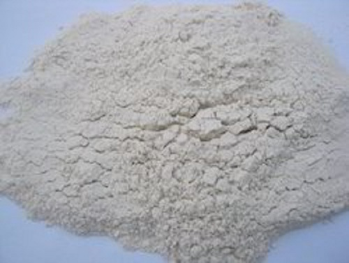 White Spray Dried Garlic Powder