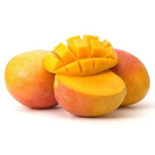 Yellow Fresh Mango Fruits
